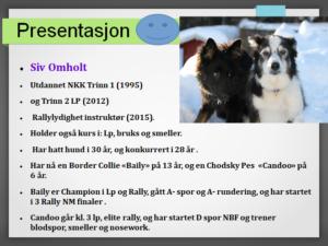 Siv Omholt presentasjon